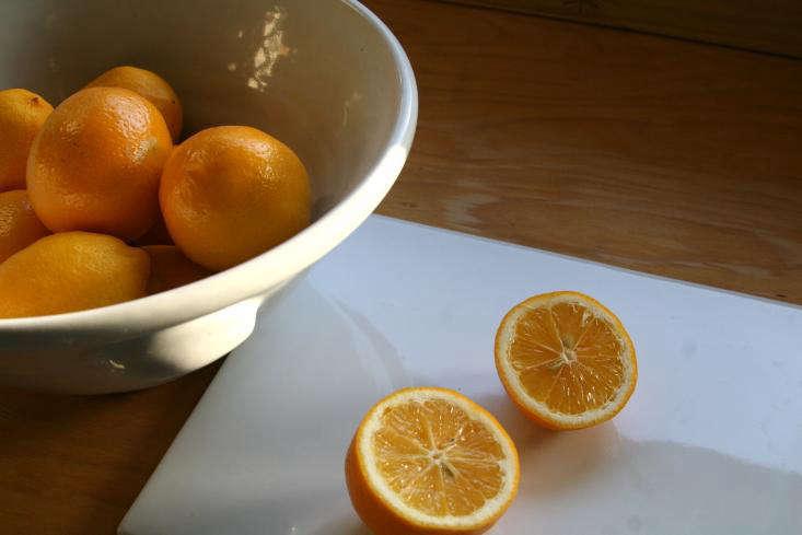 Lemon Cleaning Tip Sarah Lonsdale