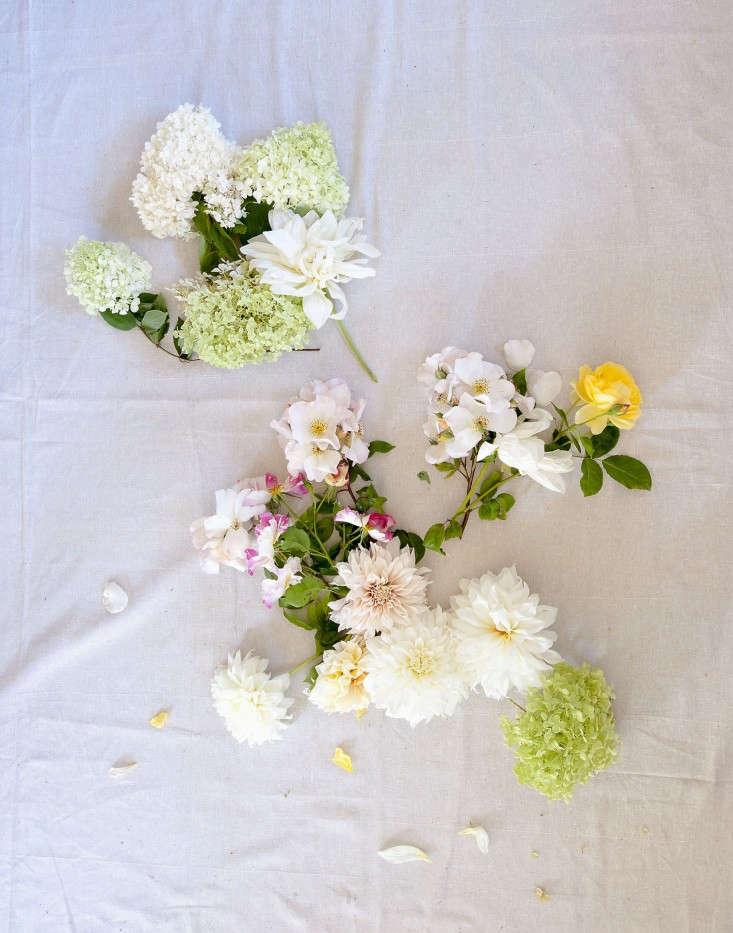 Louesa-Roebuck-crysanthemum-flower-display