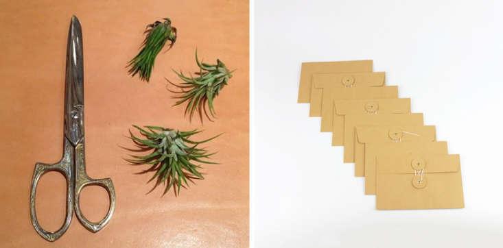 McNally-Jackson-Store-scissors-and-Midori-envelopes-Remodelista