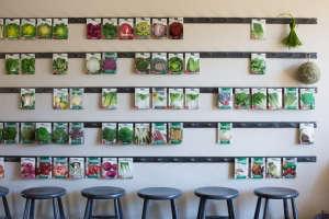 Mix Gardens Healdsburg/Gardenista