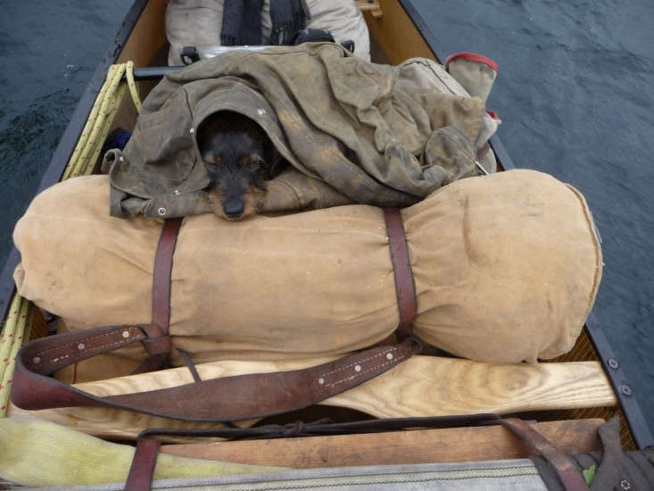 Outpost-Co.-packed-canoe-with-dog-Remodelista