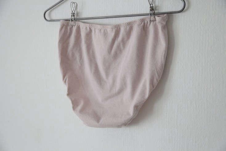 Pansy-Panties-Pink-Briefs-Remodelista-04
