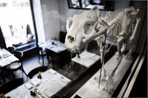 Museet Restaurant in Stockholm Featuring a Skeleton Tiger I Remodelista