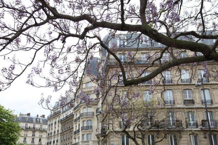 Spring-in-Paris-Alexa-Remodelista
