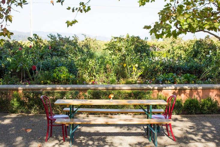 Swanson-Vineyard-outdoor-garden