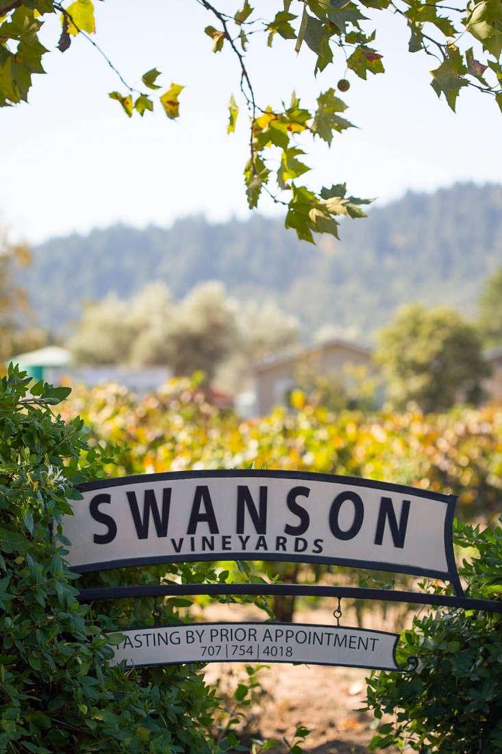Swanson-vineyards