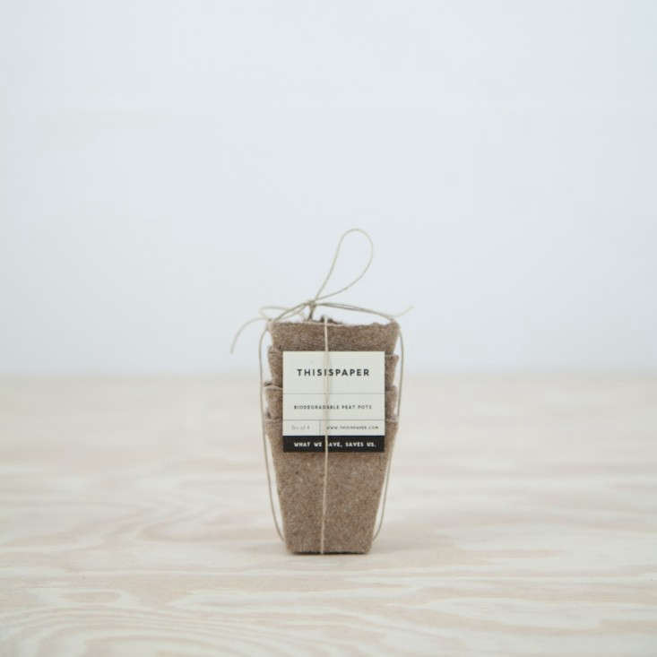 This-Is-Paper-Small-Peat-Pots-via-Remodelista