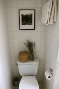 Toilet Well in All White Bath, Remodelista