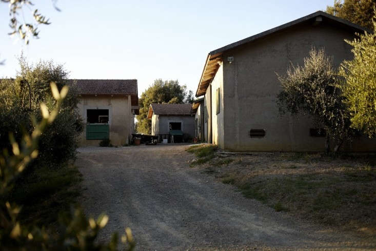 Villa-Lena-Tuscany-Remodelista-07