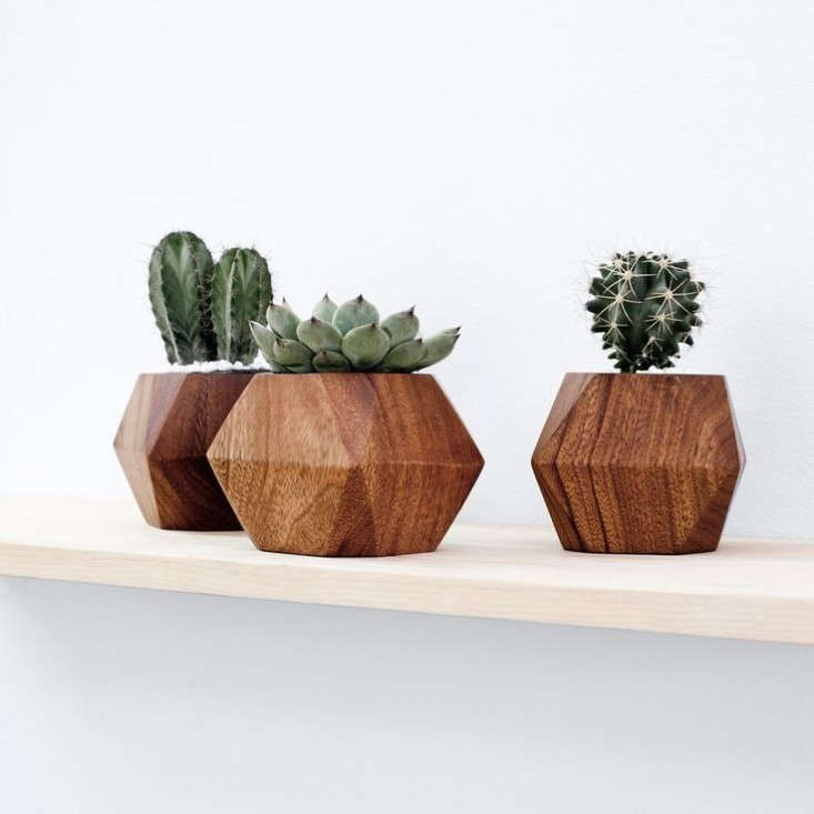 Wooden-block-planters-The-Citizenry-Remodelista