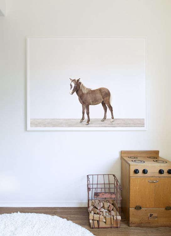 animal-print-shop-horse-remodelista