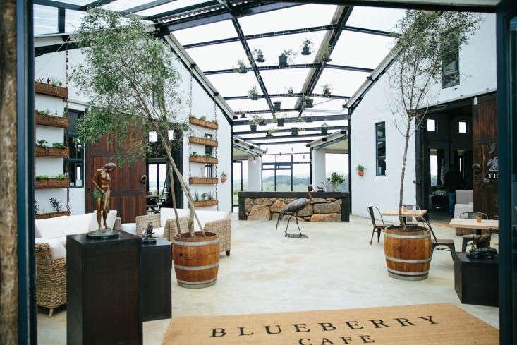blueberry-cafe-samantha-maber-entrance-gardenista
