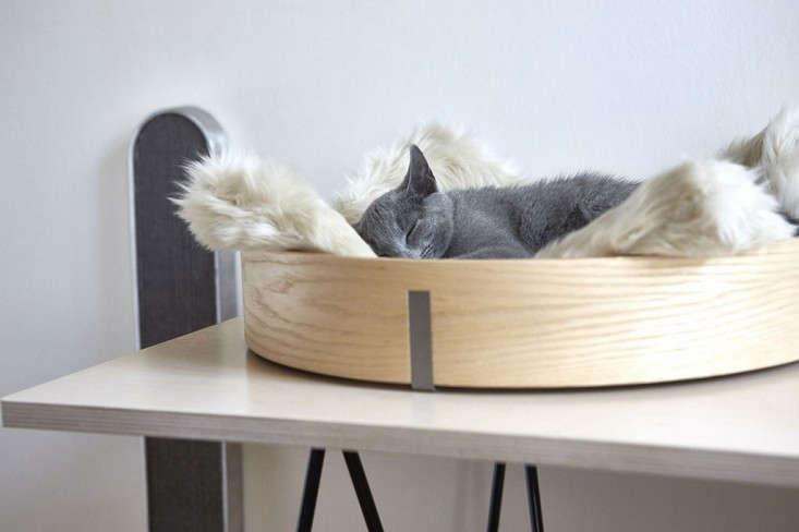 cat-bed-remodelista