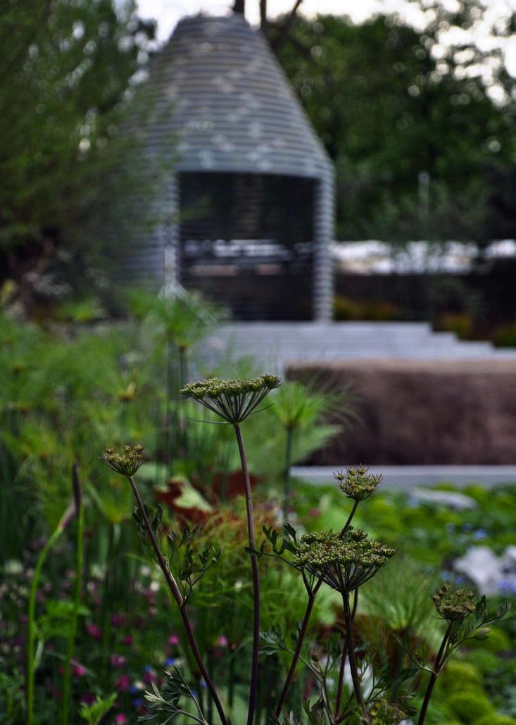 The Inside Scoop on the 100th Annual Chelsea Flower Show