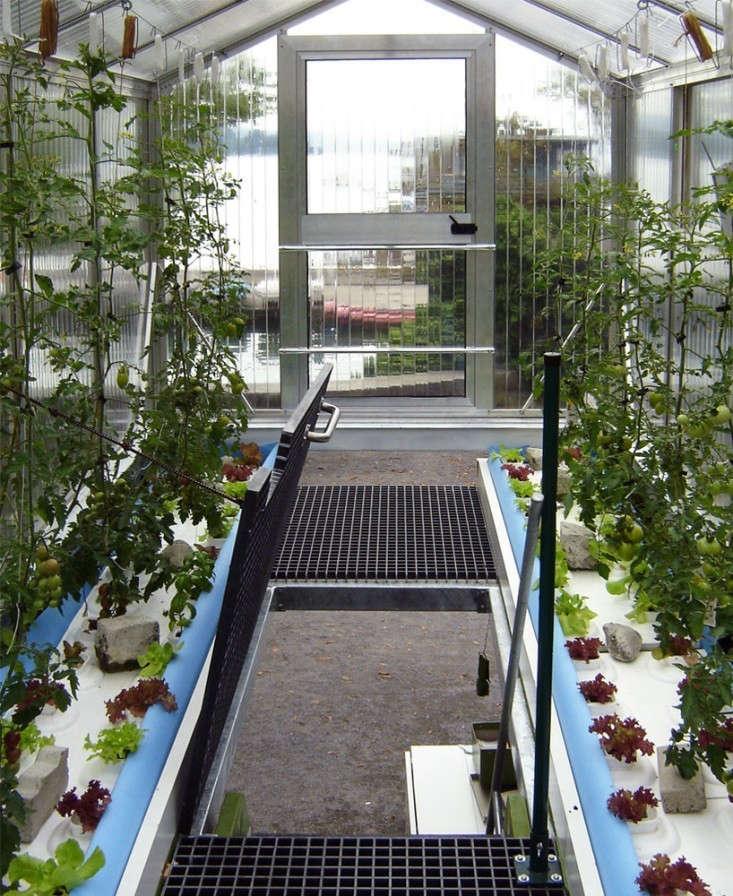 damien-chivialle-urban-farm-unit-shipping-container-garden-2-gardenista