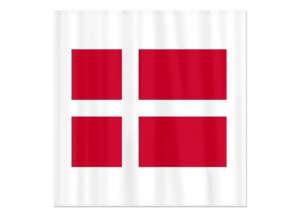 Danish Flag Shower Curtain/Remodelista