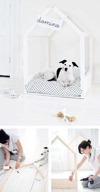 domino-dog-house