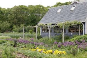 Eva's Garden Dartmouth | Remodelista