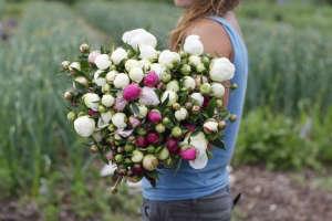 Eva's garden peonies | Gardenista