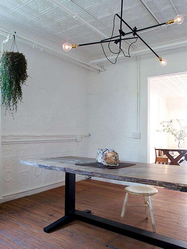 fern-table-2