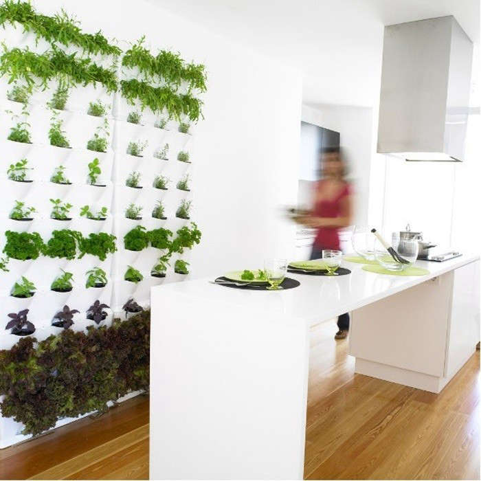 Kitchen Herbs: 7 Kitchens With Built-In Herb Gardens: Remodelista