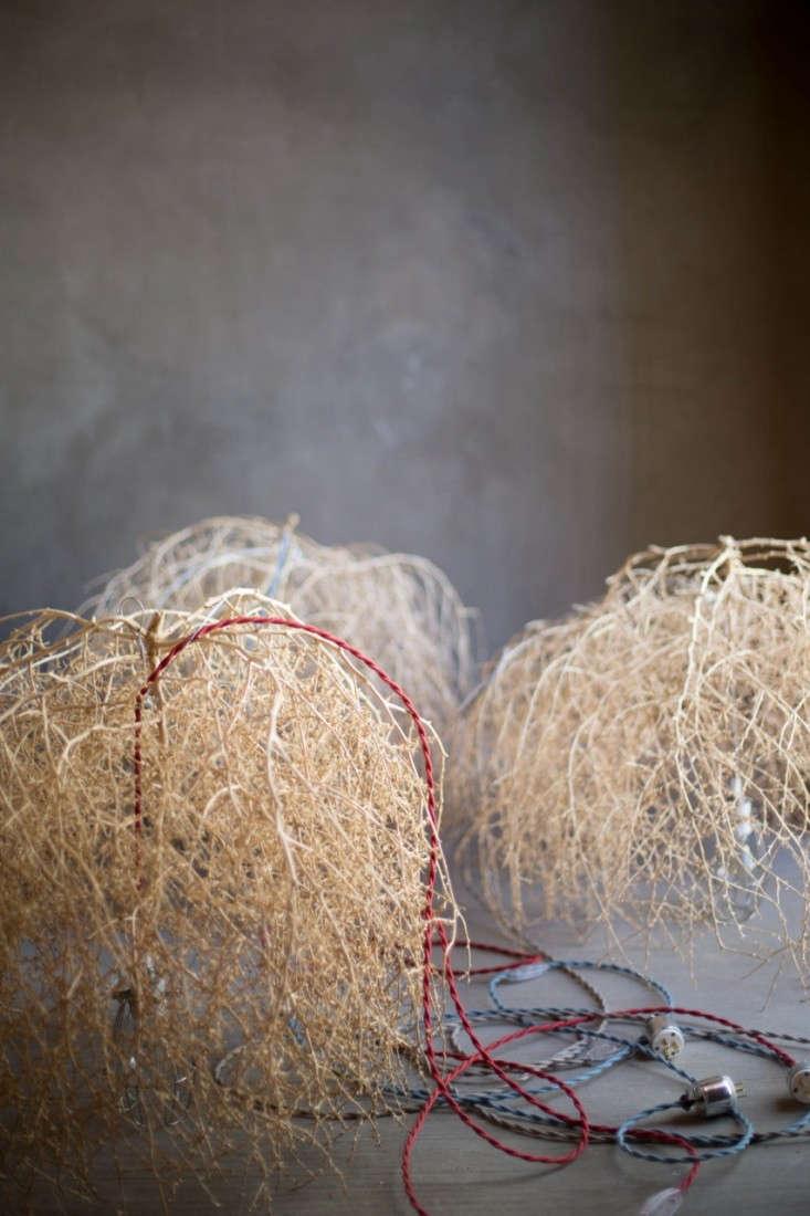jean-landry-tumbleweed-1