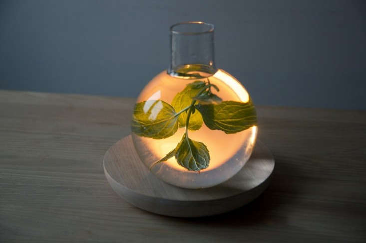 liquid_light_kristine_five_melvaer_06