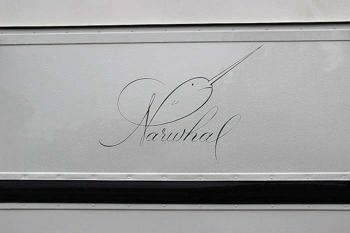 narwhal-logo