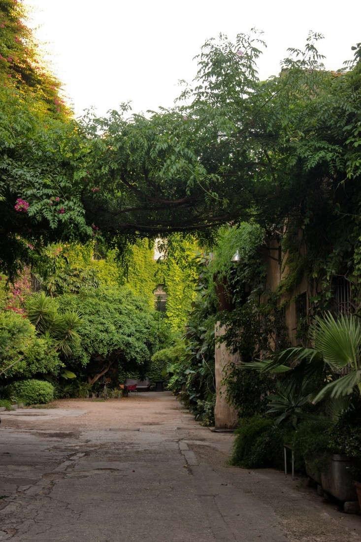 palo-alot-pancho-garden-remodelista