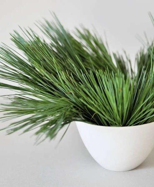 spruce-floral-arrangement