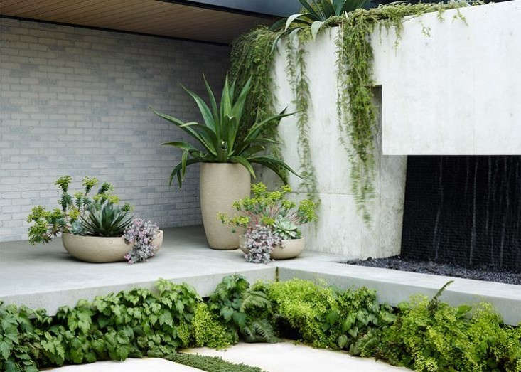 Trending on gardenista planting ideas indoors and out for Japanese garden plans and plants