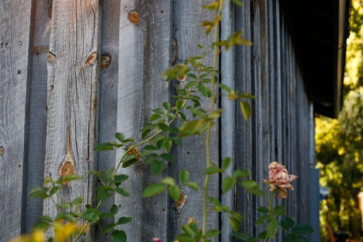 wood-clad-siding-saint-helena-remodelista