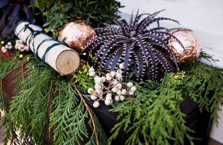 Holiday%20Window%20Boxes%20Decorated%20with%20Cedar%20and%20Copper%20Balls%20and%20Succulents%2C%20Gardenista