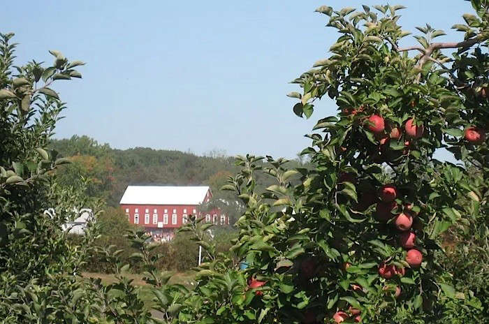 Larriland-Farm-Maryland