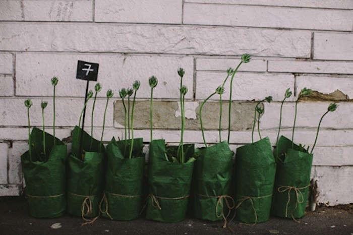 fowlers%20flower%20shop%20melbourne%20australia%2012