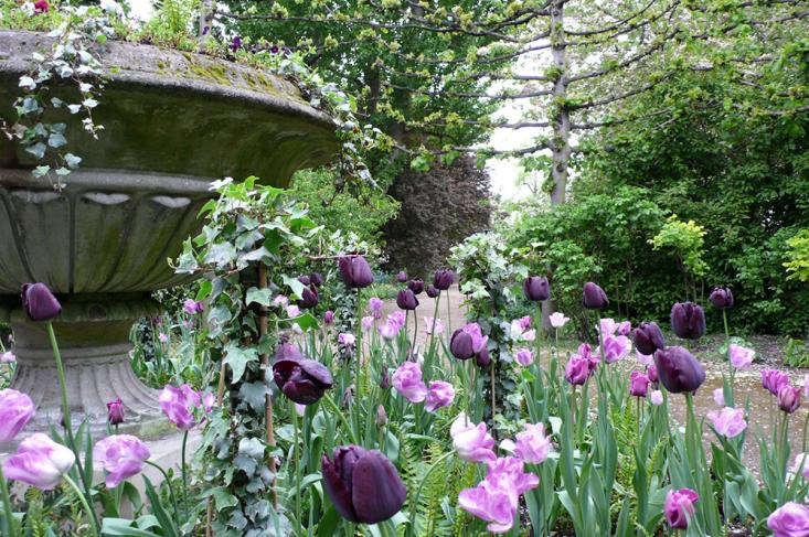 tulips%20and%20urn%20secret%20garden