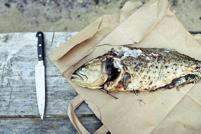 700_beetlebung-farm-fish