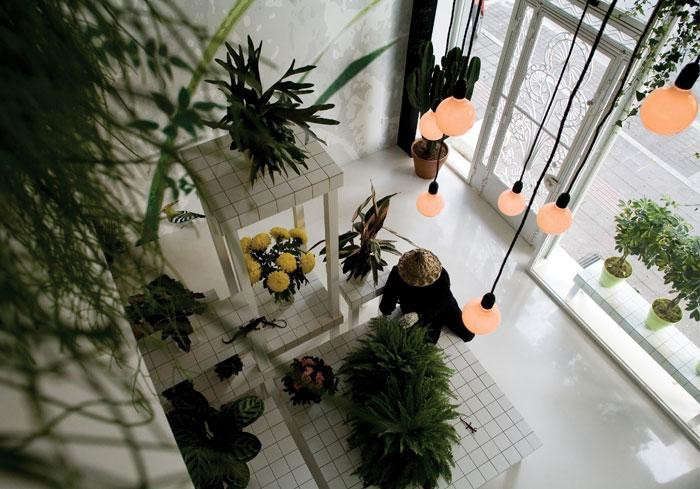700_aktipis-flower-shop-01