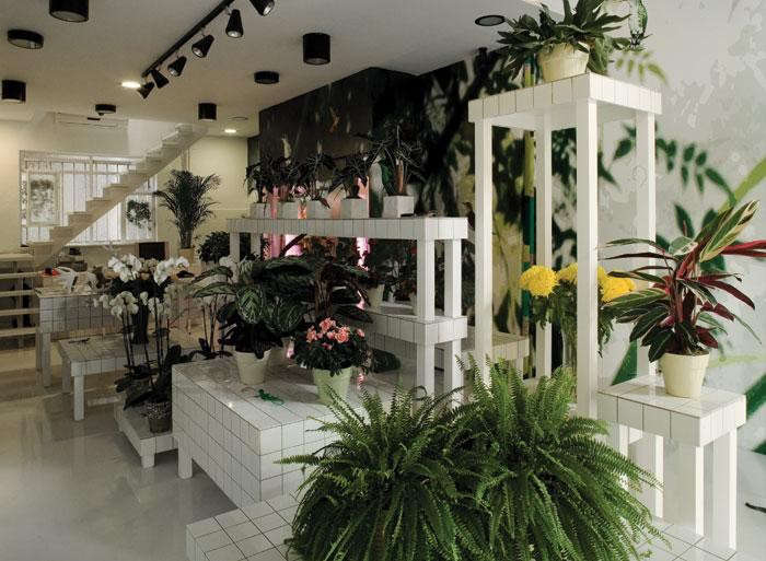 700_aktipis-flower-shop-04