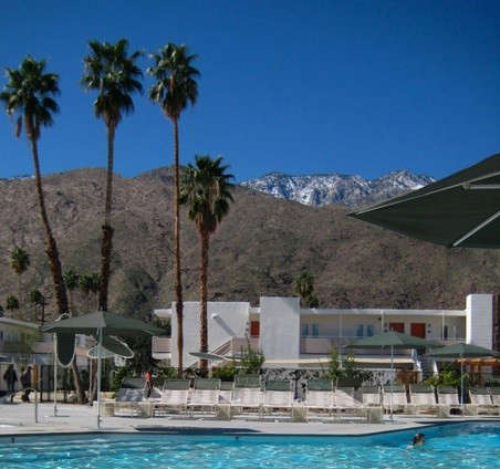 ace-hotel-pool-shot
