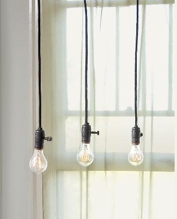 bulbs11