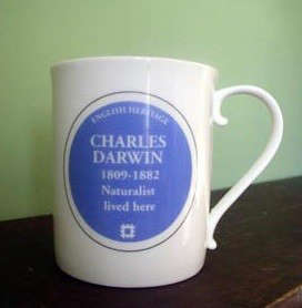 charles-darwin-mug