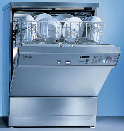 Commercial dishwasher for home