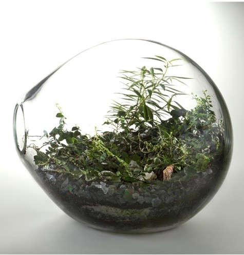 paula-hayes-round-terrarium