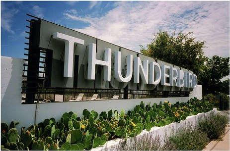 thunderbird-cactus-outside