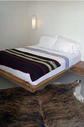 thunderbird-hotel-bedroom-with-animal