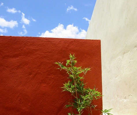 timothy-koelle-red-wall