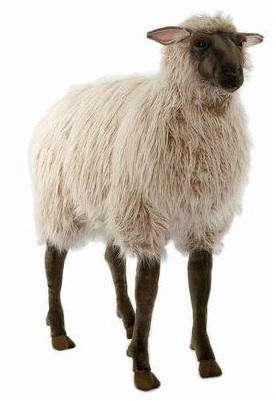 hansa-sheep-2