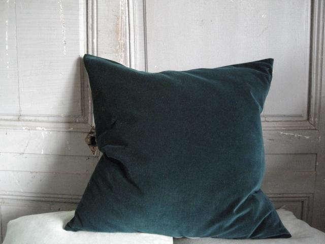 640_kirsten-hecktermann-teal-pillow