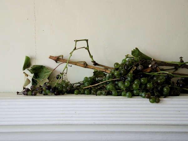 studio-choo-grapes-mantle